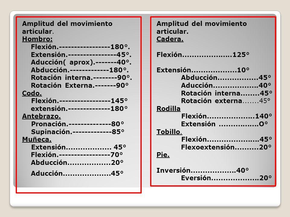 Amplitud del movimiento articular. Hombro: Flexión.-----------------180°. Extensión.----------------45°. Aducción( aprox).-------40°. Abducción.------