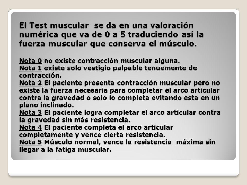 El Test muscular se da en una valoración numérica que va de 0 a 5 traduciendo así la fuerza muscular que conserva el músculo. Nota 0 no existe contrac