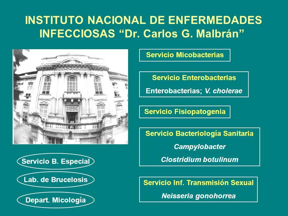 INSTITUTO NACIONAL DE ENFERMEDADES INFECCIOSAS Dr. Carlos G. Malbrán Servicio Inf. Transmisión Sexual Neisseria gonohorrea Servicio Enterobacterias En