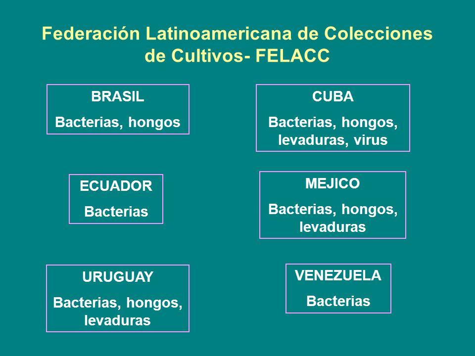 Federación Latinoamericana de Colecciones de Cultivos- FELACC BRASIL Bacterias, hongos CUBA Bacterias, hongos, levaduras, virus ECUADOR Bacterias MEJI