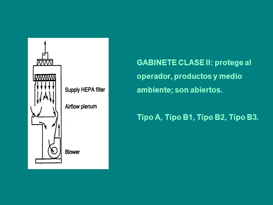 GABINETE CLASE II: protege al operador, productos y medio ambiente; son abiertos. Tipo A, Tipo B1, Tipo B2, Tipo B3.