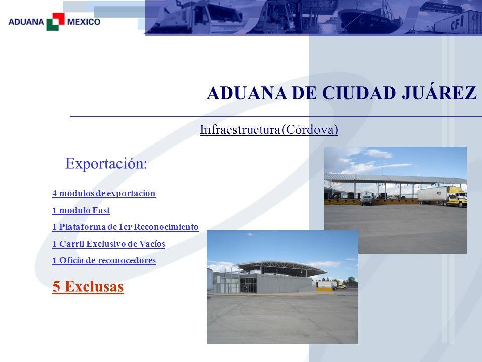 Plataforma de importación Plataforma de exportación Instalaciones del Aeropuerto Internacional Abraham González Plataforma de 2do reconocimiento ADUANA DE CIUDAD JUÁREZ