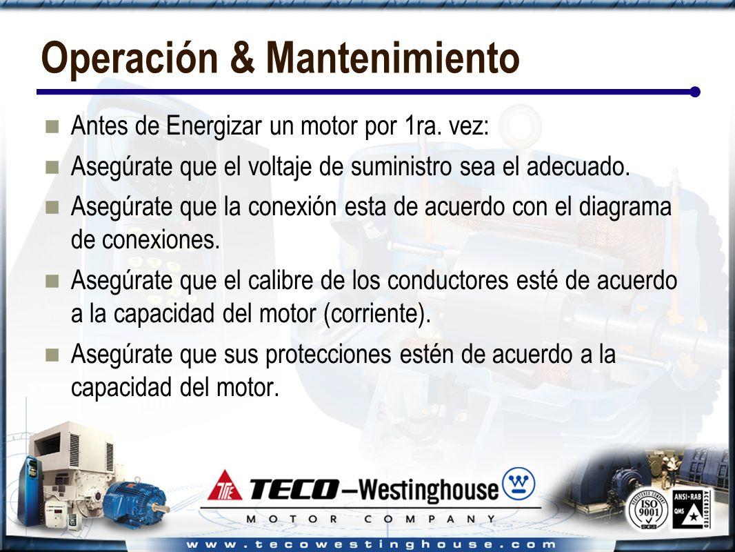 Operación & Mantenimiento Antes de Energizar un motor por 1ra.