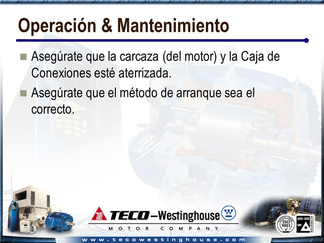 Operación & Mantenimiento Asegúrate que la carcaza (del motor) y la Caja de Conexiones esté aterrizada.