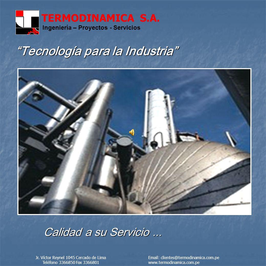 TERMODINAMICA S.A. Ingeniería – Proyectos - Servicios