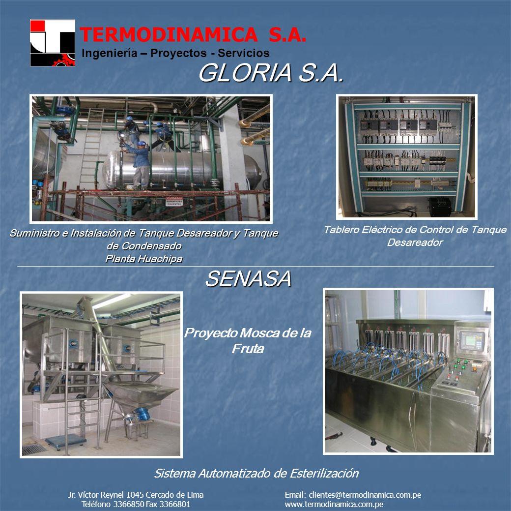 TERMODINAMICA S.A.
