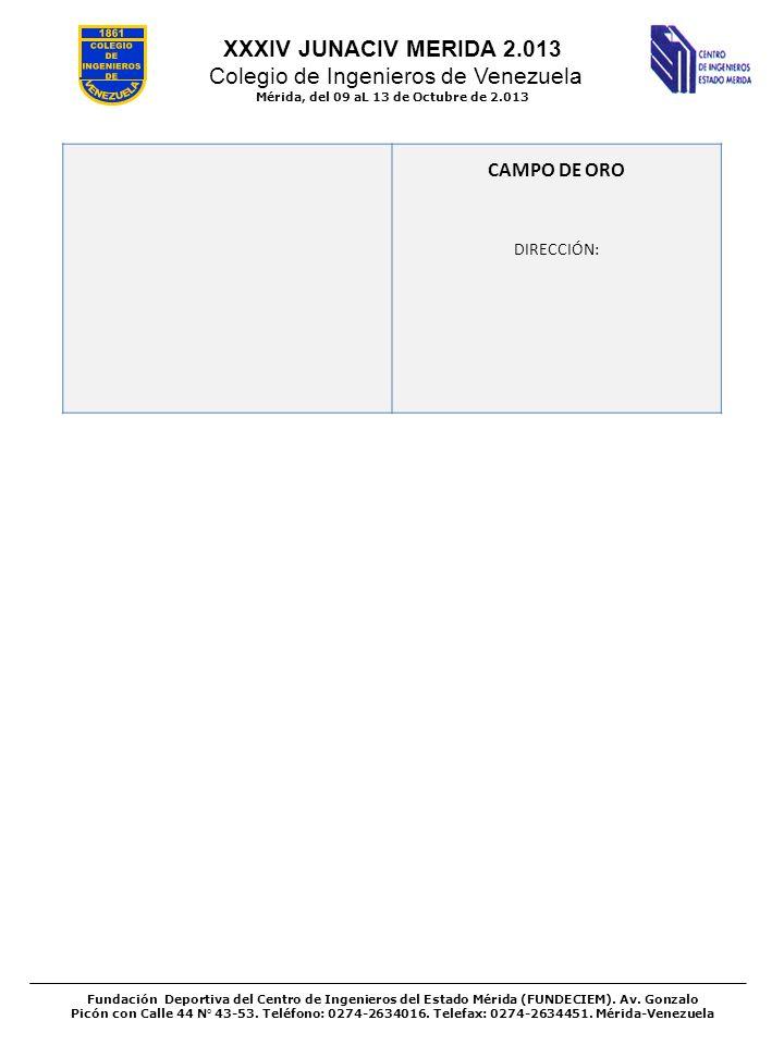 XXXIV JUNACIV MERIDA 2.013 Colegio de Ingenieros de Venezuela Mérida, del 09 aL 13 de Octubre de 2.013 Fundación Deportiva del Centro de Ingenieros de