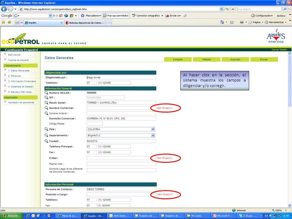 Al hacer click en la sección, el sistema muestra los campos a diligenciar y/o corregir.