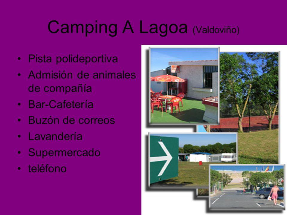 Camping A Lagoa (Valdoviño) Pista polideportiva Admisión de animales de compañía Bar-Cafetería Buzón de correos Lavandería Supermercado teléfono