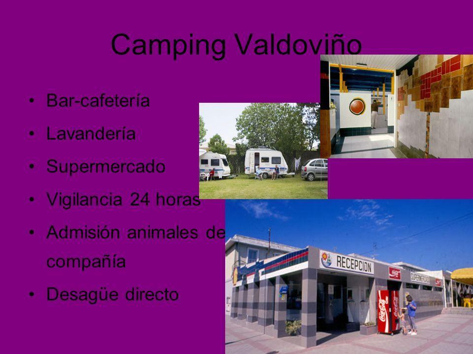 Camping Valdoviño Bar-cafetería Lavandería Supermercado Vigilancia 24 horas Admisión animales de compañía Desagüe directo