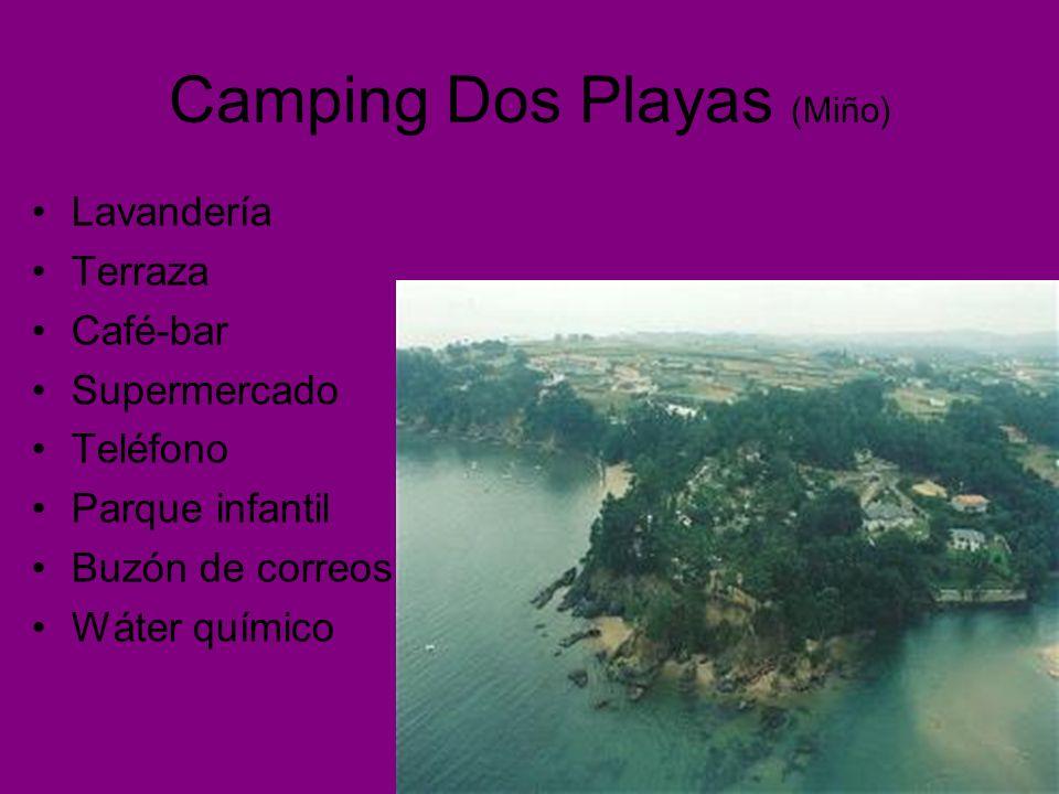 Camping Dos Playas (Miño) Lavandería Terraza Café-bar Supermercado Teléfono Parque infantil Buzón de correos Wáter químico