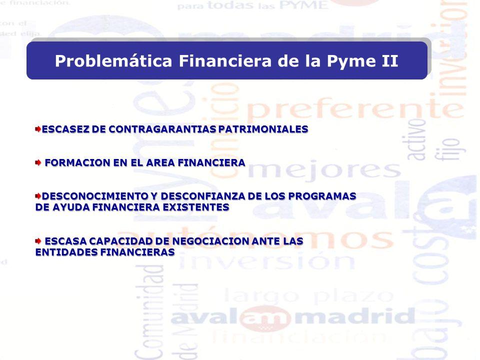 ESCASEZ DE CONTRAGARANTIAS PATRIMONIALES FORMACION EN EL AREA FINANCIERA FORMACION EN EL AREA FINANCIERA DESCONOCIMIENTO Y DESCONFIANZA DE LOS PROGRAMAS DE AYUDA FINANCIERA EXISTENTES ESCASA CAPACIDAD DE NEGOCIACION ANTE LAS ESCASA CAPACIDAD DE NEGOCIACION ANTE LAS ENTIDADES FINANCIERAS Problemática Financiera de la Pyme II