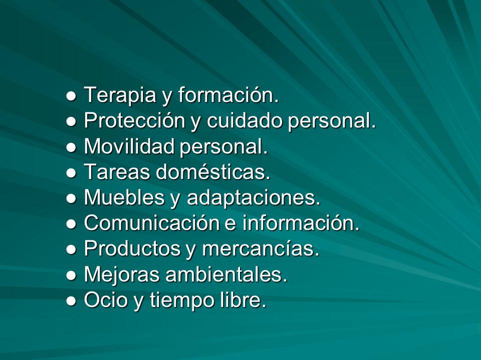 Terapia y formación. Terapia y formación. Protección y cuidado personal. Protección y cuidado personal. Movilidad personal. Movilidad personal. Tareas