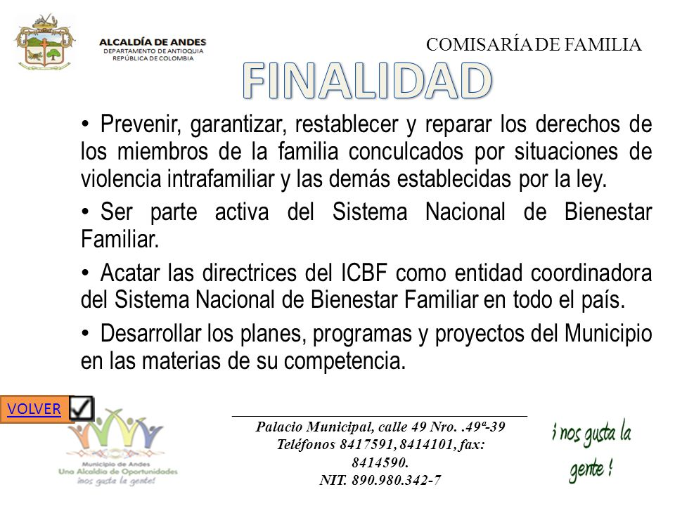 Prevenir, garantizar, restablecer y reparar los derechos de los miembros de la familia conculcados por situaciones de violencia intrafamiliar y las de