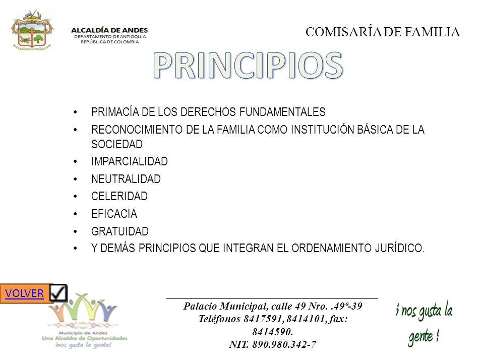 PRIMACÍA DE LOS DERECHOS FUNDAMENTALES RECONOCIMIENTO DE LA FAMILIA COMO INSTITUCIÓN BÁSICA DE LA SOCIEDAD IMPARCIALIDAD NEUTRALIDAD CELERIDAD EFICACI
