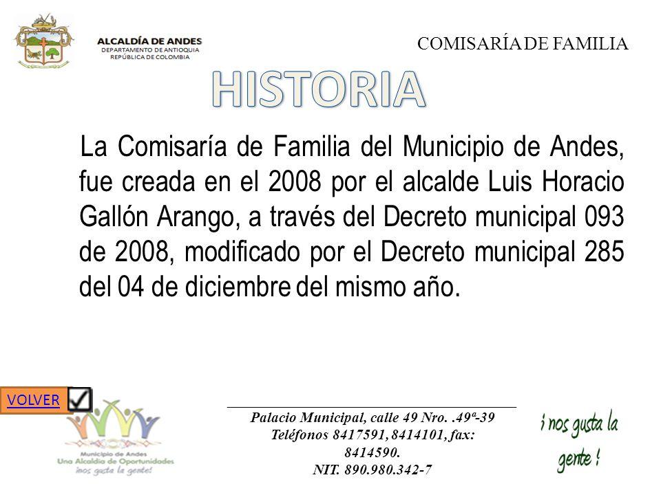 La Comisaría de Familia del Municipio de Andes, fue creada en el 2008 por el alcalde Luis Horacio Gallón Arango, a través del Decreto municipal 093 de
