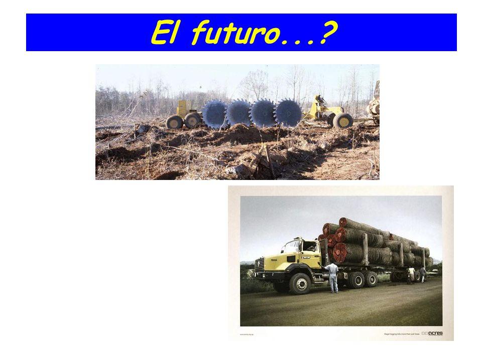 El futuro...?