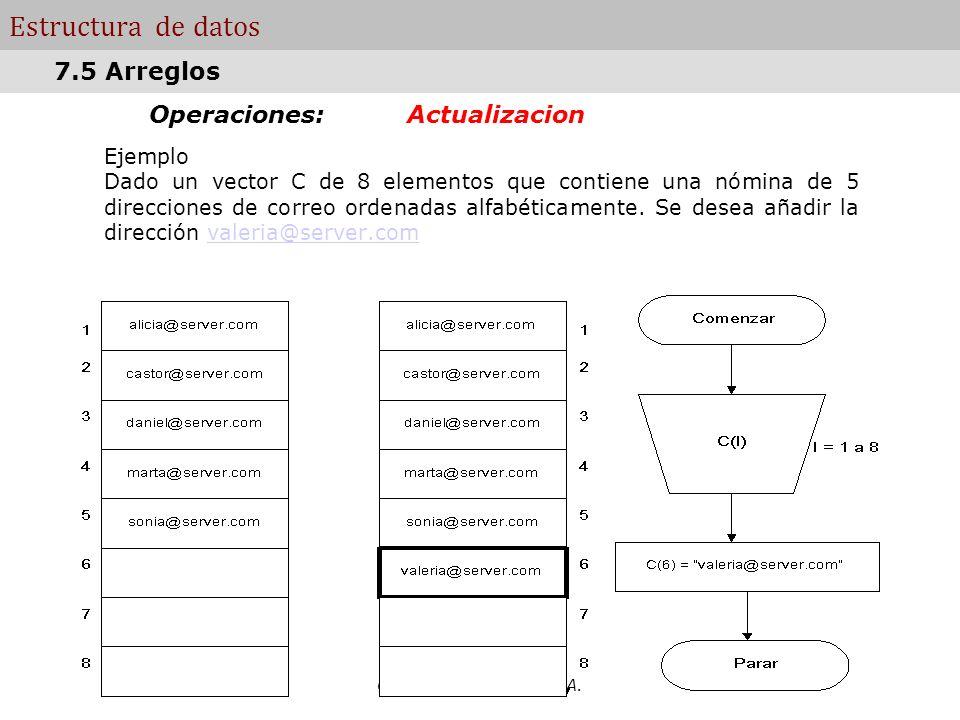 Computacion - FA.CE.NA. Estructura de datos Operaciones: Actualizacion Ejemplo Dado un vector C de 8 elementos que contiene una nómina de 5 direccione