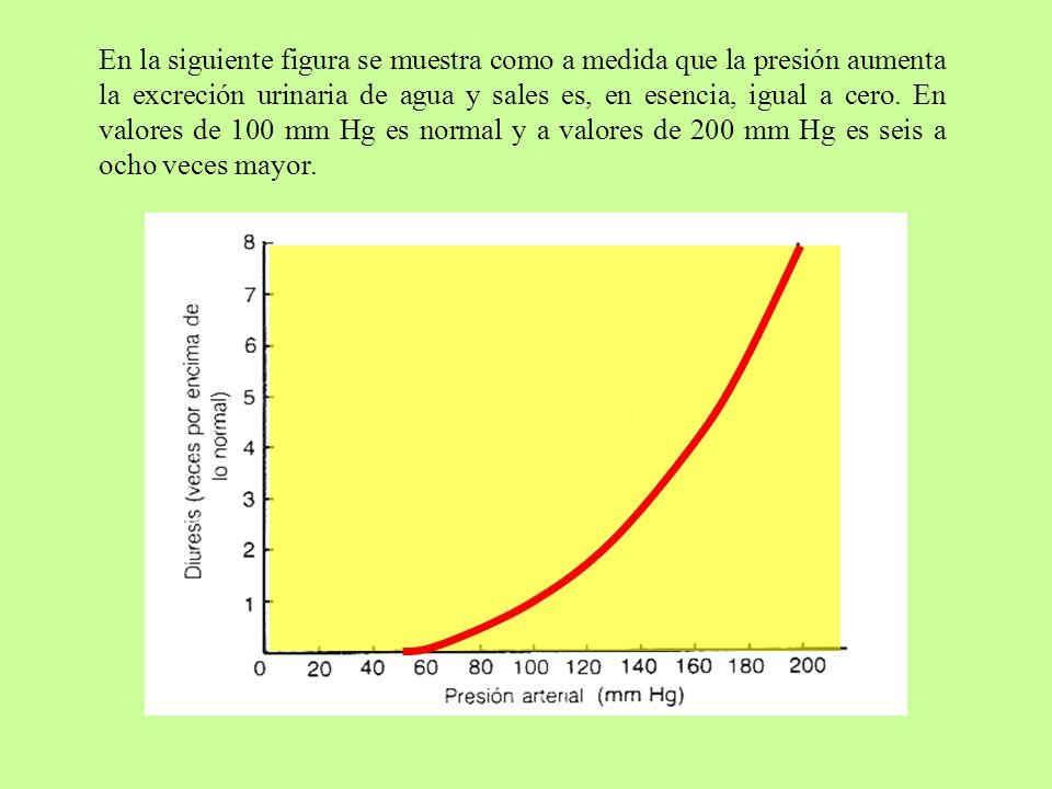 En la siguiente figura se muestra como a medida que la presión aumenta la excreción urinaria de agua y sales es, en esencia, igual a cero. En valores