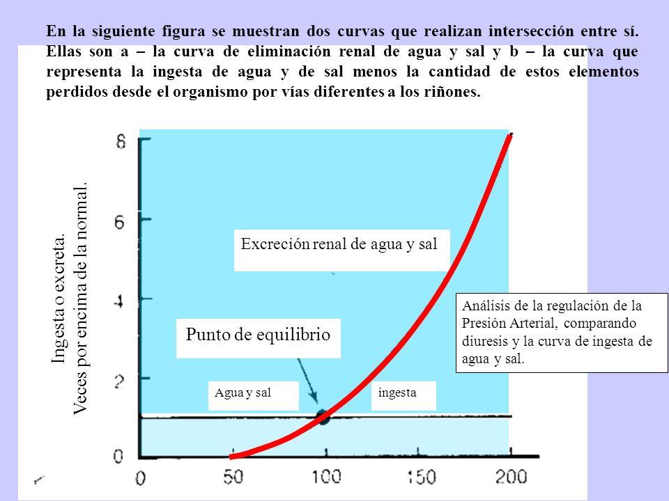 En la siguiente figura se muestran dos curvas que realizan intersección entre sí. Ellas son a – la curva de eliminación renal de agua y sal y b – la c