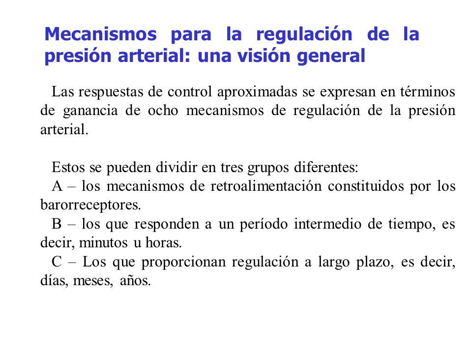 Mecanismos para la regulación de la presión arterial: una visión general Las respuestas de control aproximadas se expresan en términos de ganancia de