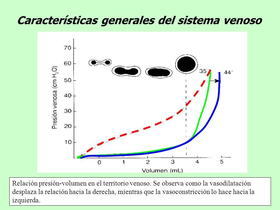 Características generales del sistema venoso Relación presión-volumen en el territorio venoso. Se observa como la vasodilatación desplaza la relación