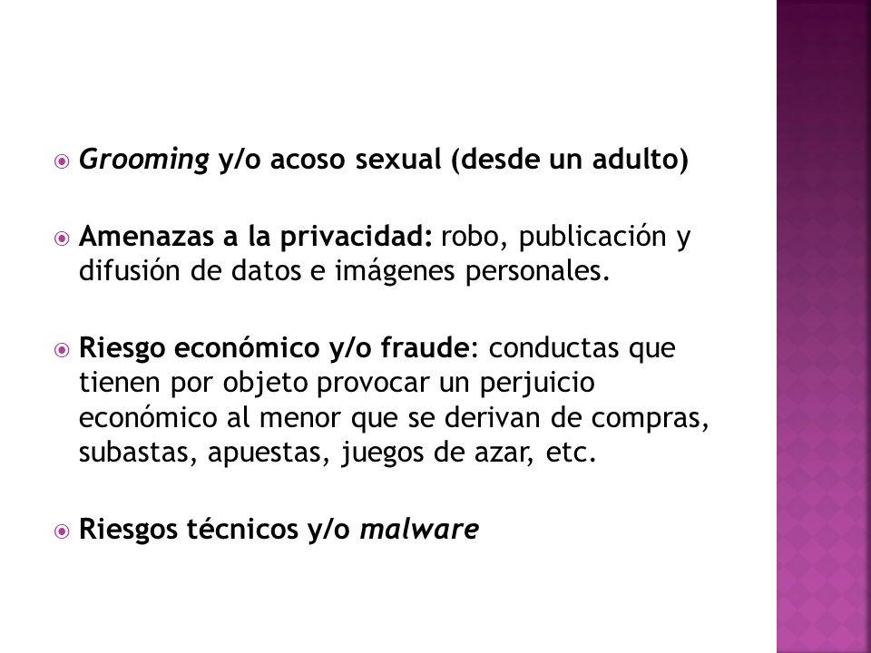 Grooming y/o acoso sexual (desde un adulto) Amenazas a la privacidad: robo, publicación y difusión de datos e imágenes personales. Riesgo económico y/