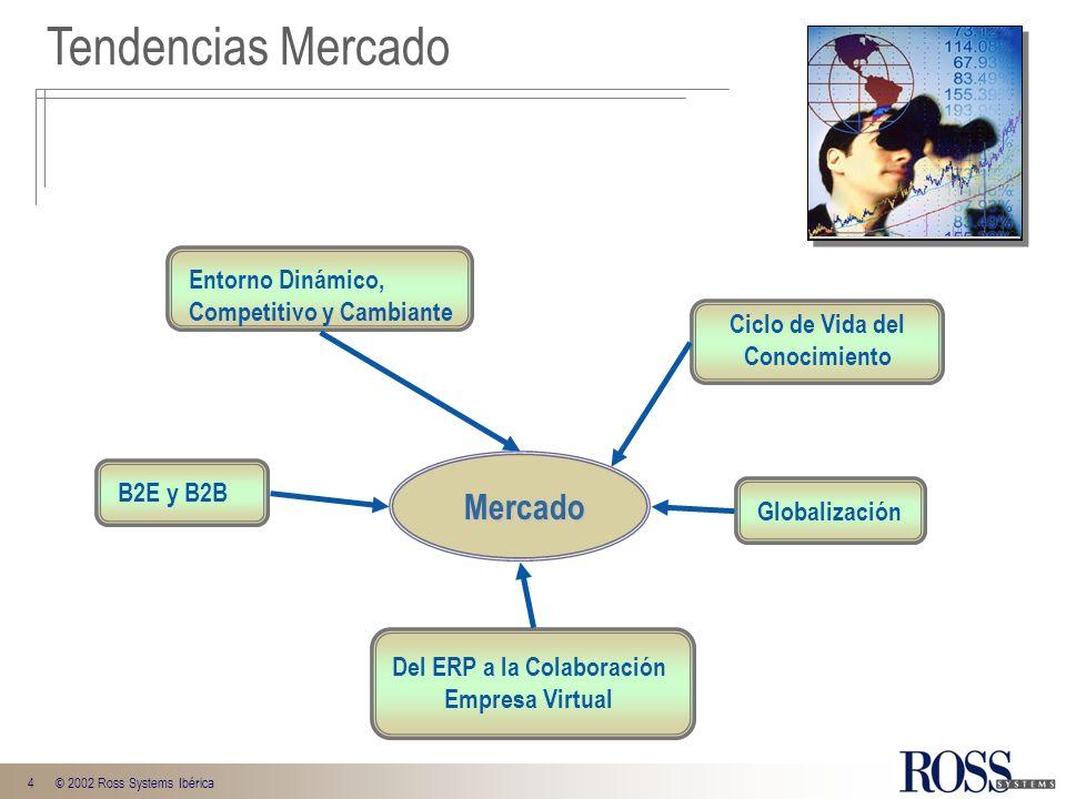 4© 2002 Ross Systems Ibérica Entorno Dinámico, Competitivo y Cambiante B2E y B2B Del ERP a la Colaboración Empresa Virtual Globalización Tendencias Me