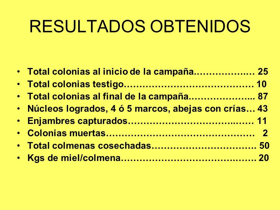 RESULTADOS OBTENIDOS Total colonias al inicio de la campaña.…………….… 25 Total colonias testigo…………………………………… 10 Total colonias al final de la campaña.…