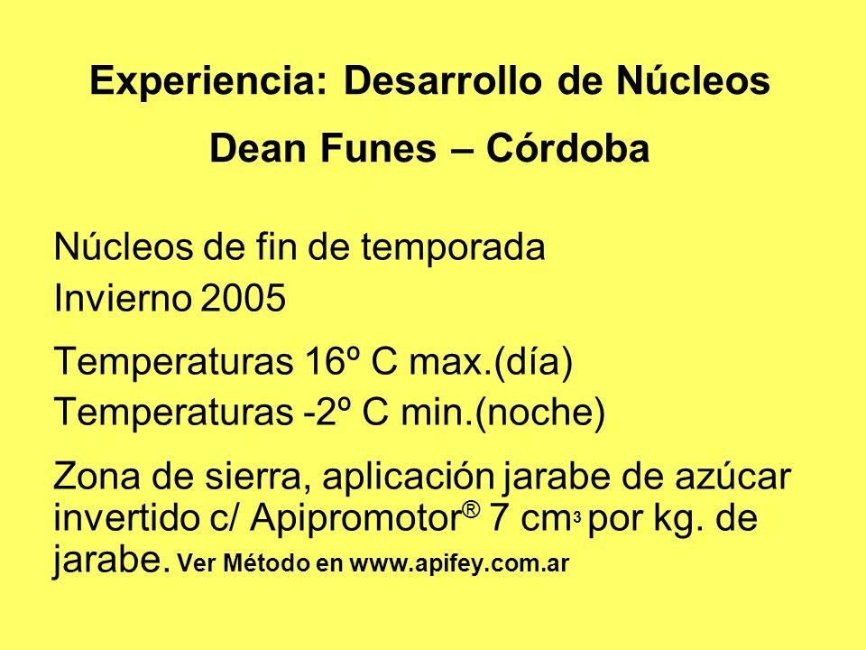 Experiencia: Desarrollo de Núcleos Dean Funes – Córdoba Núcleos de fin de temporada Invierno 2005 Temperaturas 16º C max.(día) Temperaturas -2º C min.