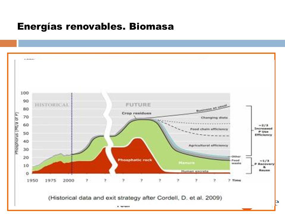 Energías renovables. Biomasa Una persona consume 7667.5 kg de fósforo/vida Reservas mundiales Sáhara Occidental: 35.5% !! China: 23.7%! Jordania: 9.8%