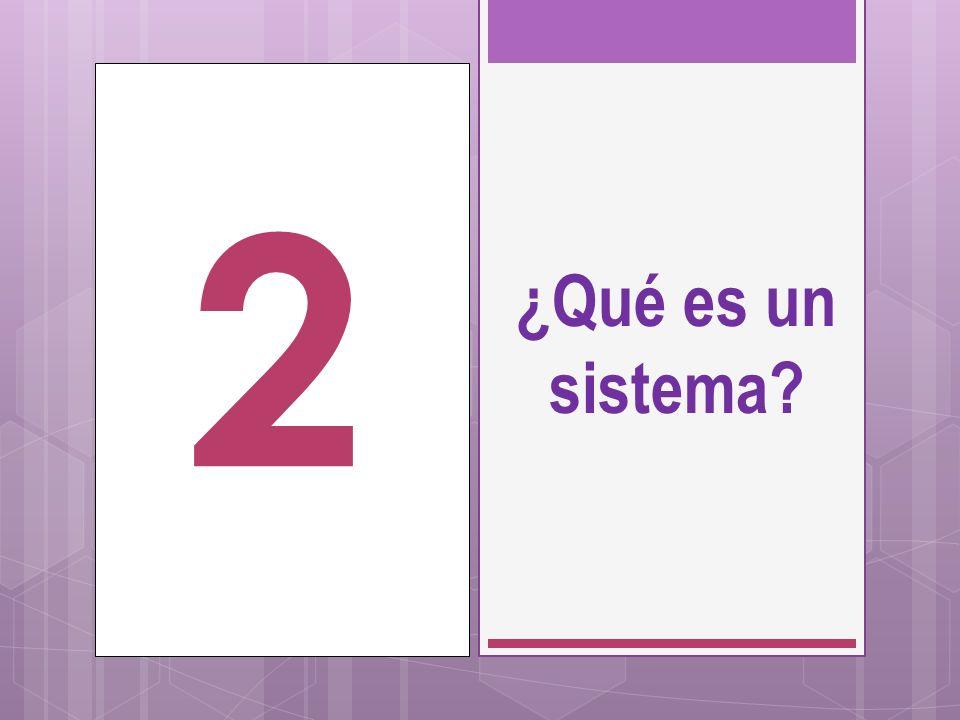 ¿Qué es un sistema? 2