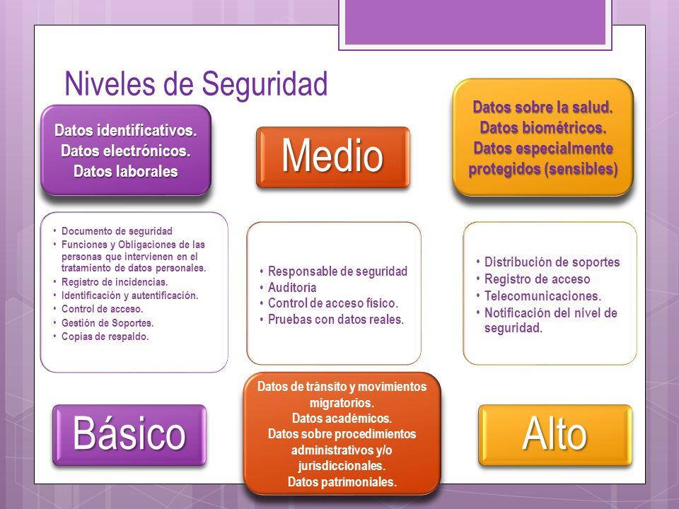 Niveles de Seguridad Documento de seguridad Funciones y Obligaciones de las personas que intervienen en el tratamiento de datos personales. Registro d