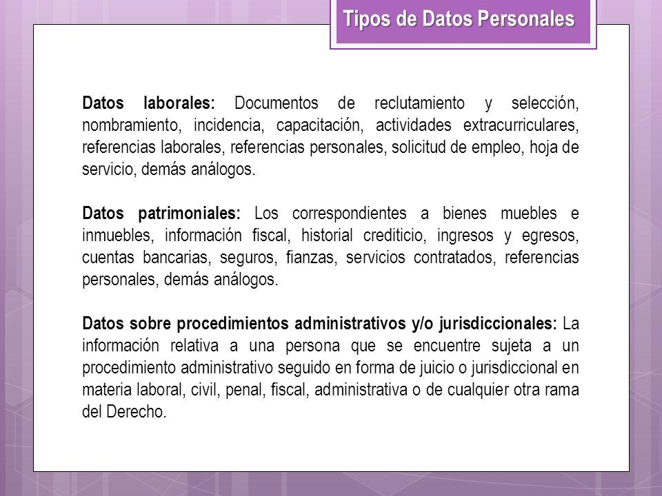 Datos laborales: Documentos de reclutamiento y selección, nombramiento, incidencia, capacitación, actividades extracurriculares, referencias laborales