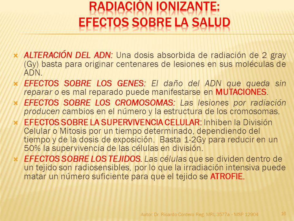 ALTERACIÓN DEL ADN: Una dosis absorbida de radiación de 2 gray (Gy) basta para originar centenares de lesiones en sus moléculas de ADN. EFECTOS SOBRE