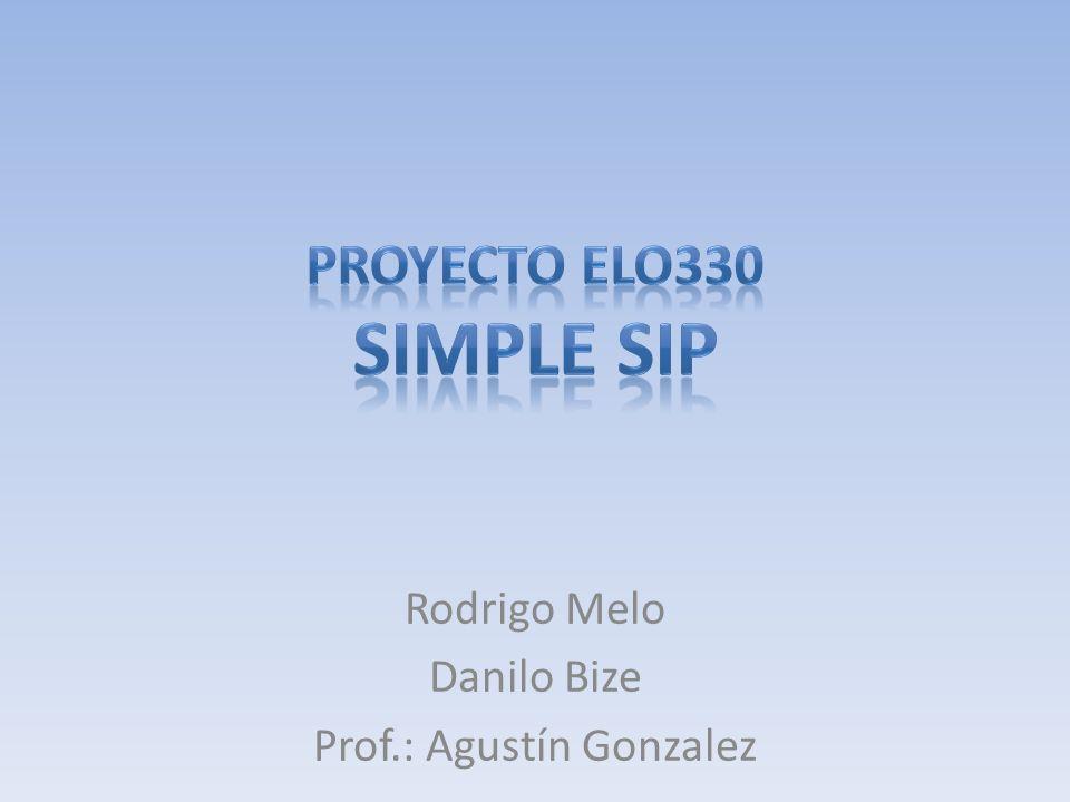 Rodrigo Melo Danilo Bize Prof.: Agustín Gonzalez