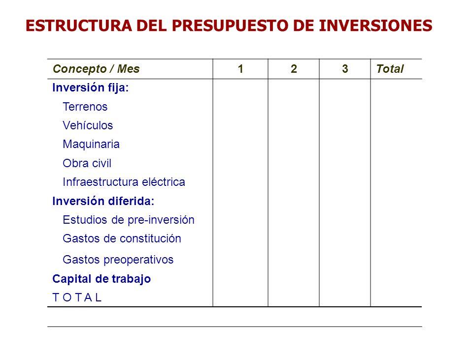 ESTRUCTURA DEL PRESUPUESTO DE INVERSIONES Concepto / Mes123Total Inversión fija: Terrenos Vehículos Maquinaria Obra civil Infraestructura eléctrica In