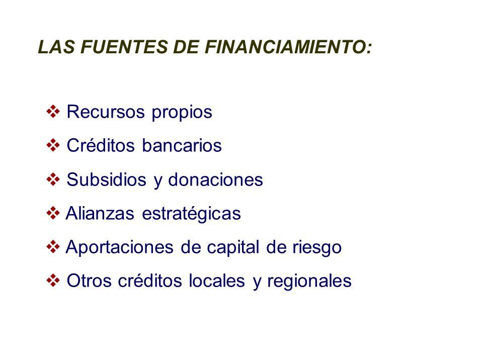 LAS FUENTES DE FINANCIAMIENTO: Recursos propios Créditos bancarios Subsidios y donaciones Alianzas estratégicas Aportaciones de capital de riesgo Otros créditos locales y regionales