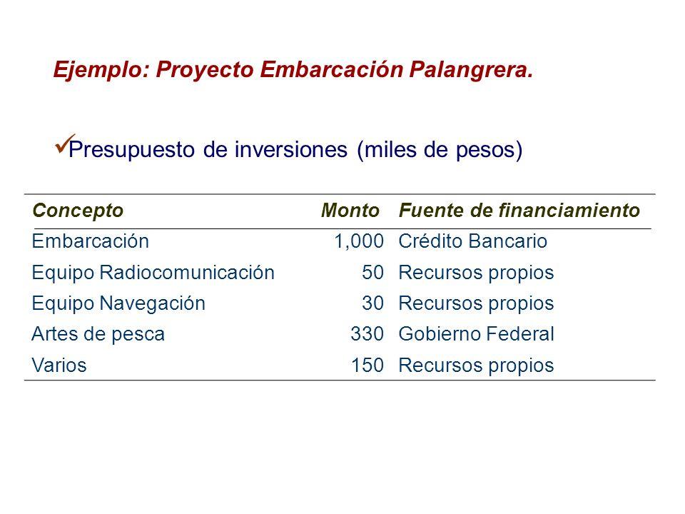 Ejemplo: Proyecto Embarcación Palangrera. Presupuesto de inversiones (miles de pesos) ConceptoMontoFuente de financiamiento Embarcación 1,000 Crédito