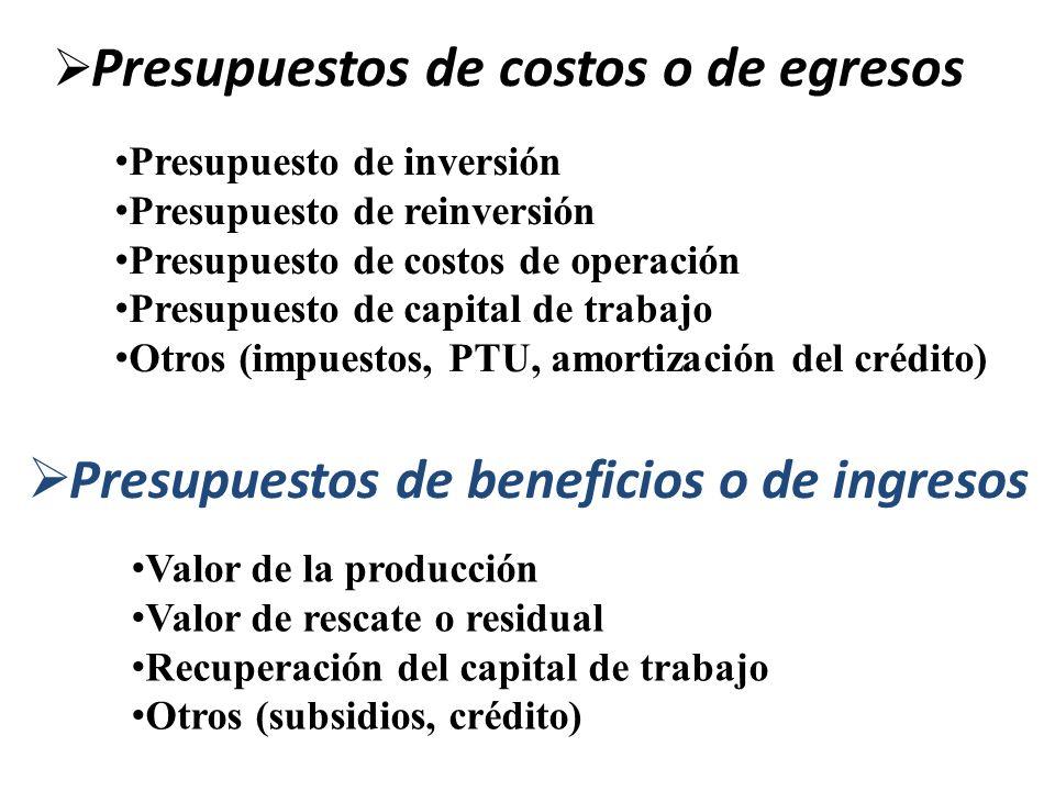Presupuestos de costos o de egresos Presupuesto de inversión Presupuesto de reinversión Presupuesto de costos de operación Presupuesto de capital de t