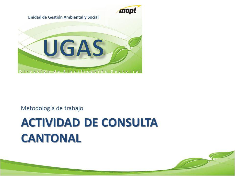 ACTIVIDAD DE CONSULTA CANTONAL Metodología de trabajo
