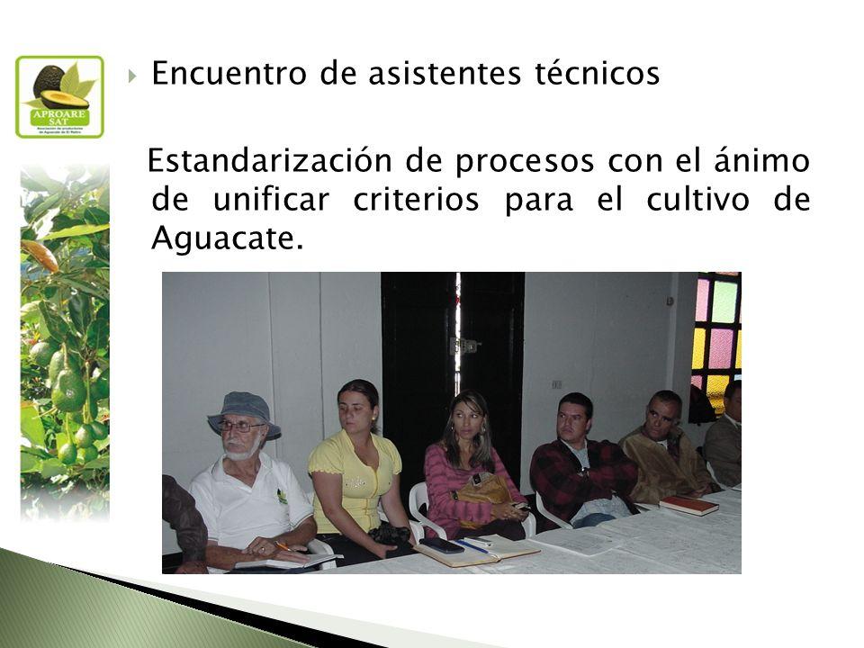 Encuentro de asistentes técnicos Estandarización de procesos con el ánimo de unificar criterios para el cultivo de Aguacate.
