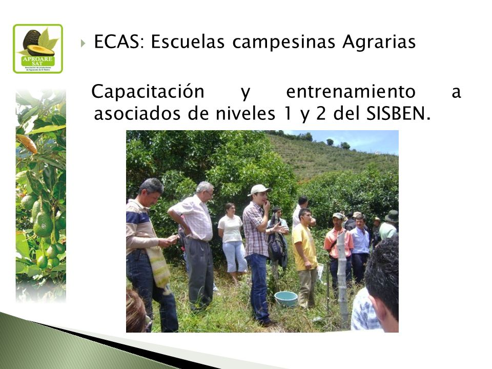 ECAS: Escuelas campesinas Agrarias Capacitación y entrenamiento a asociados de niveles 1 y 2 del SISBEN.