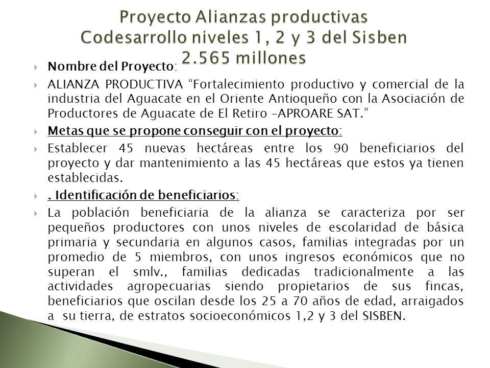 Nombre del Proyecto: ALIANZA PRODUCTIVA Fortalecimiento productivo y comercial de la industria del Aguacate en el Oriente Antioqueño con la Asociación de Productores de Aguacate de El Retiro –APROARE SAT.