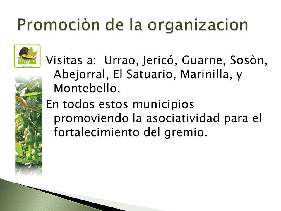 Visitas a: Urrao, Jericó, Guarne, Sosòn, Abejorral, El Satuario, Marinilla, y Montebello.