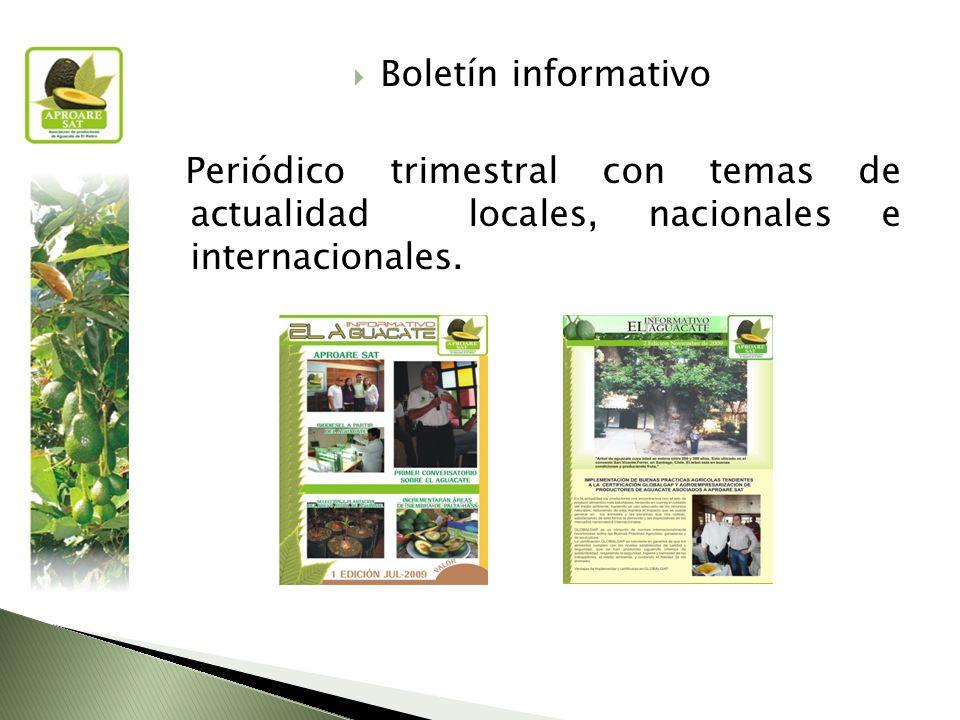 Boletín informativo Periódico trimestral con temas de actualidad locales, nacionales e internacionales.