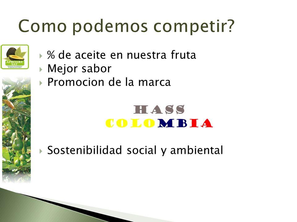 % de aceite en nuestra fruta Mejor sabor Promocion de la marca HASS COLOMBIA Sostenibilidad social y ambiental