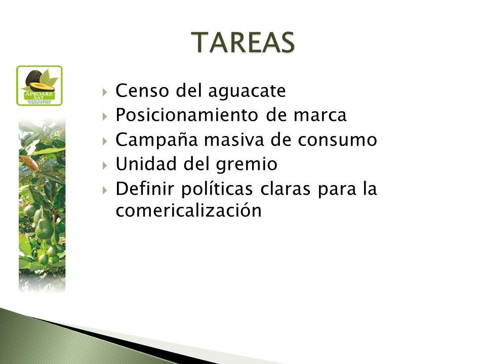 Censo del aguacate Posicionamiento de marca Campaña masiva de consumo Unidad del gremio Definir políticas claras para la comericalización