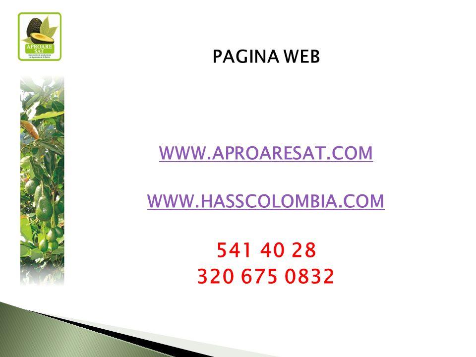 PAGINA WEB WWW.APROARESAT.COM WWW.HASSCOLOMBIA.COM 541 40 28 320 675 0832