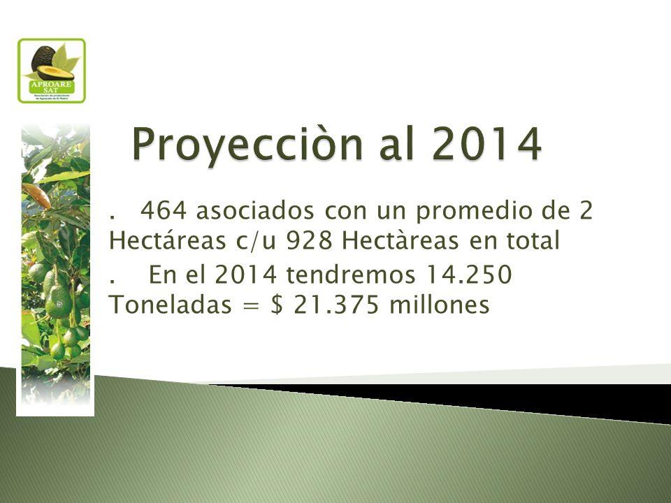 464 asociados con un promedio de 2 Hectáreas c/u 928 Hectàreas en total.